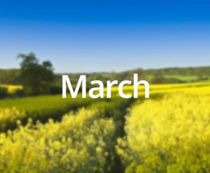 Day Trips March Maxfields Travel